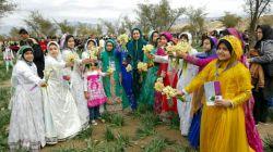 جشنواره گل نرگس جره _کازرون .