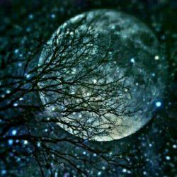 ماه من غصه چرا؟؟؟آسمان رابنگرکه بعد صدهاشب وروز گرم وآبی وپرازمهربه مامیخندد،ماه من غصه چرا؟؟