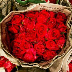 نمی دونم چرا همه حس خود برتر بینی پیدا کردند اگه کسی روز عشق رو تبریک میگه چرا فکر می کنید خیلی خاص و عاقل هستید که به خودتون اجازه بدهید به تفکر اون ادم توهین کنید شما هر چی قبول ندارین حق ندارید تفکر خودتو به دیگران القا کنی چه ایرانی چه فرنگی چه هر چی.... هر روز می تونی به کسی که دوستش داری بگی که برات مهمه ... یک کلام دوستت دارم ....