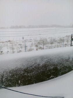 دوشنبه برفی