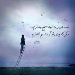 حافظ شکایت از غم هجران چه می کنی/ در هجر وصل باشد و در ظلمت است نور #حافظ