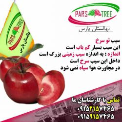 سیب توسرخ،سیب ردلاو نهالستان پارس