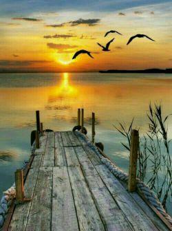 """در صداقت عمقی است که در دریا نیست .... در سادگی بلندایی است که در کوه نیست ...سادگی مقدمه صداقت است...و فاصله سادگی تا صداقت """"دریا دریا معرفت """" است...."""