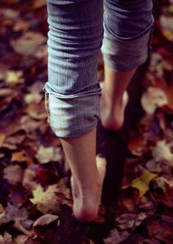 این برگهای زرد  به خاطر پاییز نیست  که از شاخه میافتند  قرار است تو از این کوچه بگذری   و آنها  پیشی میگیرند از یکدیگر  برای فرش کردن مسیرت..