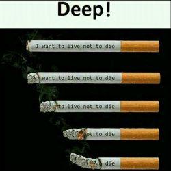 (مراحل سوختن سیگار و زندگی):ژرف! 1.می خواهم زندگی کنم،نمی خواهم بمیرم/ 2.خواست زندگی کردن ،نه مردن /3. زندگی کردن نه مردن/4.نه مردن /5.مردن #انگلیسی #سلامت #اجتماعی #زندکی #پزشکی  #english #English