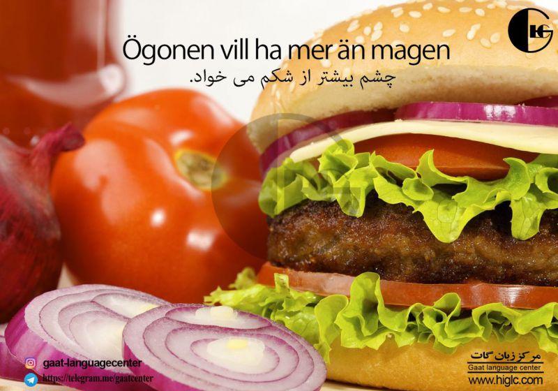 #بهترین_آموزشگاه_زبان_سوئدی_تهران www.higlc.ir