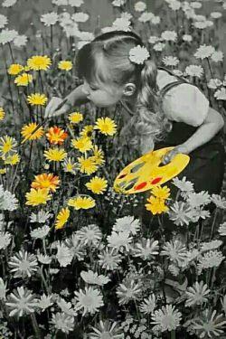 قلمت را بردار، بنویس از همه خوبیها ، زندگی , عشق ،امید  و هر آن چیز که بر روی زمین زیبا است، گل مریم،، گل رز،، بنویس از دل یک عاشق بی تاب وصال،، از تمنا بنویس،، از دل کوچک یک غنچه که وقت است دگر باز شود،، از غروبی بنویس که چون یاقوت و شقایق سرخ است،، بنویس از لبخند،، از نگاهی بنویس که پر از عشق به هر سوی جهان می نگرد،، قلمت را بردار ، روی کاغذ بنویس : زندگی با همه تلخی ها شیرین است ...