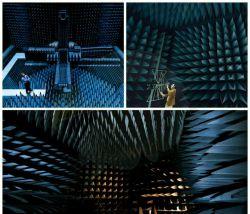 ساکت ترین اتاق جهان با درجه صداى منفیِ9 دسیبل بقدری بی صداست که در آن صدای جریان خون شنیده میشود. این سکوت میتواند توهم زا باشد و بیشترین زمانی که کسی در آن دوام آورده 45دقیقه است