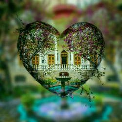 دل اگه حالیش بود  که دل نمیشد⁉مغز میشد....پس دل دله .......ازش توقع های اضافه نداشته باش!!!!!!!!