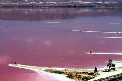 دریاچه صورتی (مهارلو) واقع در ۵۷ کیلومتری شیراز #ایران_زیبا #ایرانگردی