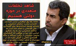 پور ابراهیمی : شاهد تخلفات متعددی در حوزه دولتی هستیم