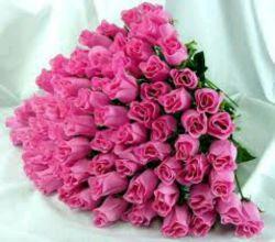 ورق خوردن برگ سبز دیگری از زندگی ات را با تقدیم یک سبد گل رز تبریک میگم داداش امیدوارم 123 ساله شی ......@mohammadaminrezaee