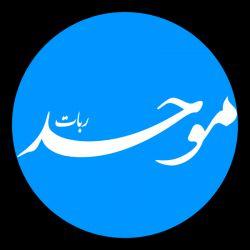 #لوگو ربات موحد * یکی از کارهای من (محمدرضا روحانی)
