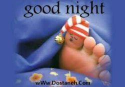 شب بخیر دوستای گلم
