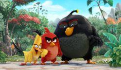 انیمیشن پرندگان خشمگین