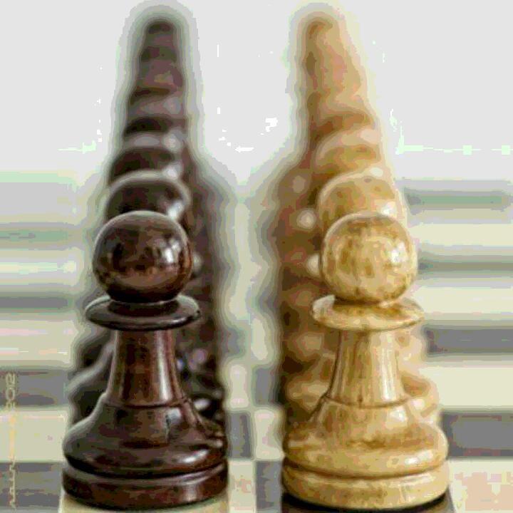 زندگی مثل شطرنج میمونه ممکنه تاس بندازی جفت شیش نیاد وزیرتو حرکت بدی مار نیشش بزنه برگردی خونه اول نباید تسلیم بشی شاید دست بعد تو حاکم شدی