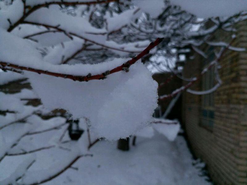بارش برف در سومین روز از بهار