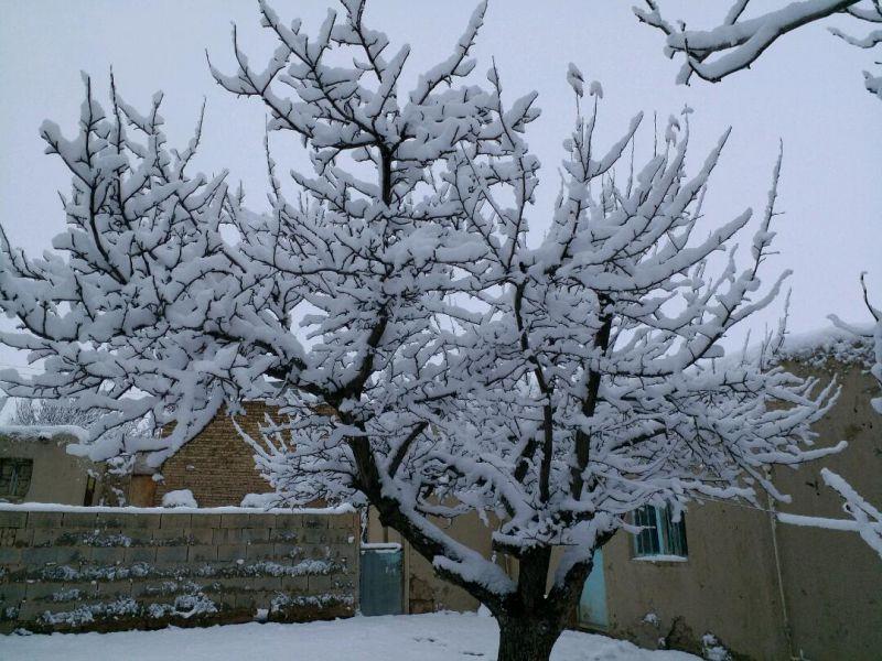 بارش برف در سومین  روز از بهار ۹۶