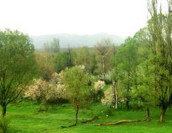 طبیعت بهاری، #کورائیم، اردبیل