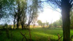 طبیعت بهاری شهر #کورائیم، اردبیل