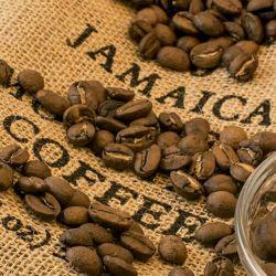 #coffe #cafe #coffeeshop #tea #قهوه #کافه #کافه_گردى #کافیشاپ #رستوران #هتل #دمنوش #دمنوش_گیاهی #ghasemzadeh  09196022175 09301220776