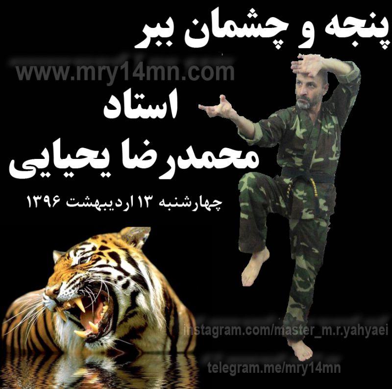 https://instagram.com/_u/master_m.r.yahyaei ,, https://telegram.me/mry14mn لینک عضویت در کانال تلگرام استاد محمدرضا یحیایی: https://telegram.me/joinchat/Bb6zS0CDk1JS1QORZXT-Sw ..... پنجه و چشمان ببر. هنرهای رزمی. کاراته.