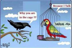 کلاغ از طوطی سوال کرد: برای چه در قفس هستی؟  طوطی جواب داد: برای اینکه من حرف میزنم...  گاهی تاوان حرف زدن قفس است...!