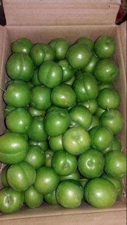 بفرمایید گوجه درجه یک کیلو ۳۵۰۰^_^درپاسخ پست دیروز