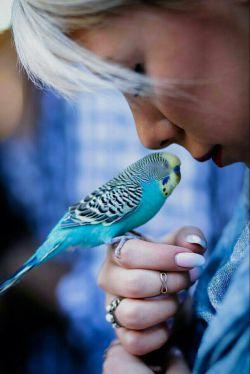 اهل #آرامش که شدی  شاد کردن دیگران  بیشتر از شاد بودن خودت  به دلت می چسبد،  و از این كار حال خوشی پیدا می کنی!  از درون به خود میبالی! ارزشمندتر از همیشه ات  می شوی! به این نقطه که برسی  آرامش وجودت را فرا می گیرد، آرامشگر می شوی!  نه به راحتی می رنجی  و نه به آسانی می رنجانی! آرامش  سهم دل هایی ست  كه نگاه شان به نگاه خداست...