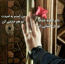 رمضان  رخصت دَقُّ الـباب است  بر آستان حضرت دوست،  عریضه هرچه هست و  حاجت دل هرچه هست،  براتون آرزوی اجابت دارم  ان شالله برآورده شود