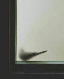 یک روز میآیی که منٖ، دیگر دچارت نیستم ، از صبر ویرانم ولی، چشم انتظارت نیستم...