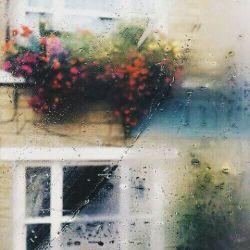 باران این روزها را دوست دارم گویی در میان صدای قطره هایش کسی بر من مژده بخشایش می دهد شاید هم خیالاتی شده ام و این فقط اشک حسرت فرشتگان است که در ماتم انسان نشدنم فرو می ریزند از مهربانی خدای مهربانم به دور است نبخشاید پس ببار باران بخشایش بر سر تمامی بخشودگان این ماه...
