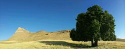 #hamrah1 _ کوه زرین_ تابستان 95 - شهرستان هرسین - لطفا اگر به نظرتون زیبااست لایک کنید ممنون.