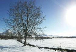 # hamrah1-  شهرستان هرسین - زمستان 95 - لطفا اگر به نظرتون زیبااست لایک کنید ممنون.