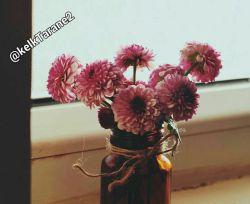 کاش میشد خاطرات خوب را  در گلدان گذاشت! و روی میزی جلوی چشمان گذاشت  تا گل کند... و عطرش بپیچد در لحظه ها....  @kelkTarane2