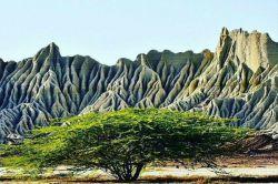کوهها معمولا یکی از مهمترین بخشهای اکوسیستمهای طبیعی محسوب میشوند. برخی از کوهها به حدی زیبا هستند که به شهرتی جهانی رسیدهاند، با این وجود هستند کوههای که با تمام خاص بودنشان کمتر نامی از آنها میشنویم که البته این مورد به بی توجهی مسئولان بر میگردد.