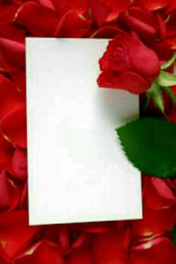 کاغذ سفید رو هر چقدرهم  تمیز باشه  کسی  قاب نمیگیره ؛؛؛؛؛؛؛  برای ماندگاری  در ذهنها  باید حرفی برای  گفتن  داشت ؛؛؛؛؛؛؛