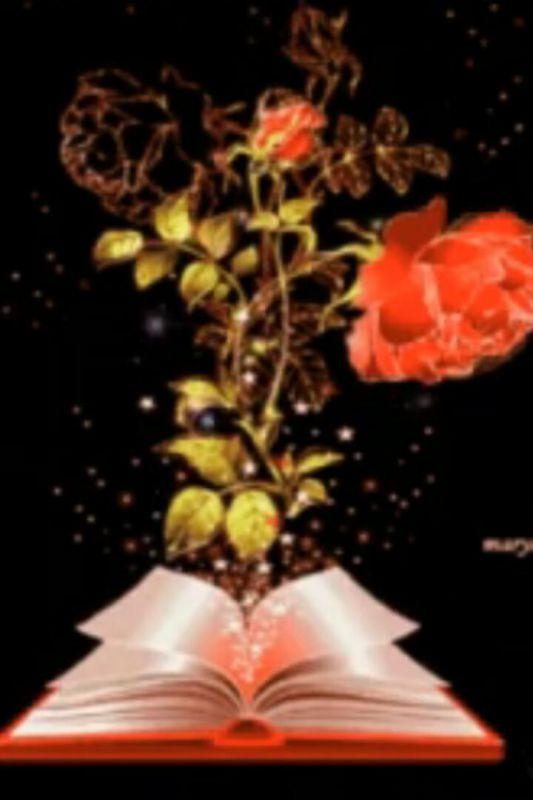 """شـــكرت یاالله كه دفتر عمرم باز است هنوز نمیدانم چند ورق مانده تا انتها.. اما برهر ورق كه بر من می گشایی زیبا خواهم نوشت...  """"به امیدت ای الله خوبیها""""   """