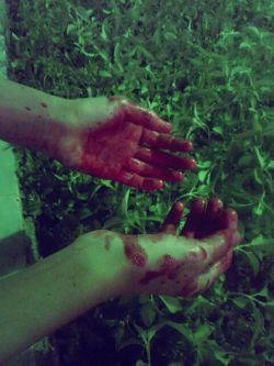 دستانم از دســـــت این روزگار بی وفا به خون آغشته شد