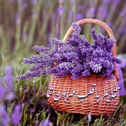 سلام دوستان خوبم صبحتون بخیروشادکامی......