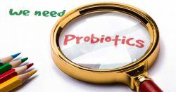 «پروبیوتیکها میکرو ارگانیسمهای زندهای هستند که مصرف کافی آنها سبب نمایان شدن اثرات سلامت بخش در بدن میزبان میشود.» بر این اساس، باکتریهای پروبیوتیک موجود در محصولات خوراکی، نه تنها باید دارای مشخصههای عملکردی و سودمند برای سلامتی انسان باشند بلکه از قابلیت ماندگاری در دستگاه گوارش هم برخوردار باشند. این ویژگیها شامل رشد و بقای ارگانیسمها در روند تولید محصول، نگهداری، و پس از مصرف حین انتقال از معده به روده است. #lacto #probiotics
