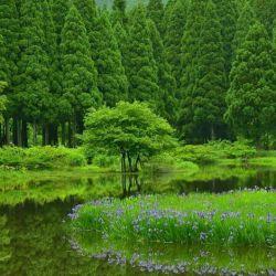 دوستان خوبم سلام صبح آدینه تون بخیروخوشی روزتون به قشنگی طبیعت......