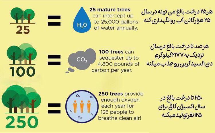 #درختان را پاسداری کنیم