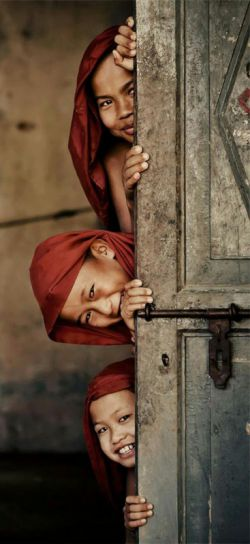 و چه بسیارند زن هایی که نه شعر می گویند نه شعر می خوانند نه شعر می دانند و خودشان چقدر شعر هستند...  #علی_حامی