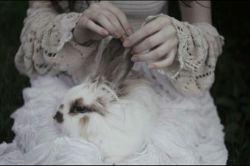 راز یک زندگی خوب دراین است که نصف بخوری، دوبرابر راه بروی، چهار برابر بخندی و بی اندازه عشق بورزی ... وسکوت،  سکوت و سکوت ...