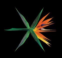 آلبوم جدید اکسو THE WAR Ko Ko Bop