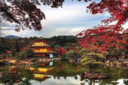 معبد غرفه طلایی #توکیو