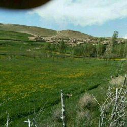 Qareh Segher