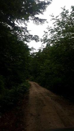 گیلان،سراوان،روستای کچاء