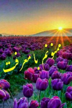 سلام دوست گرامی بابت توجه و لایک های با ارزشت یک دنیا ممنونم  زحمت کشیدی و منو شرمنده کردی ، شاد و سلامت باشی ...  @tanin_darya